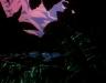 kroshka-enot-avi-image3.jpg